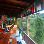 View of the hammock and sitting area