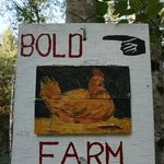 Foto de Bold Point Farmstay