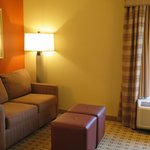 Foto van Hampton Inn Houston - Near The Galleria