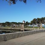 Seaport Village area - just a few steps from the Grand Hyatt.