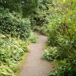 One of the easier trails to walk