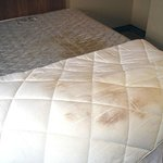 Stained mattress and bedding.
