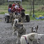 Iditarod stop - opportunity to meet Michelle Phillips and her dogs