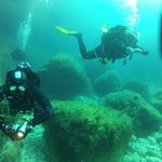 St. Andrew's Divers Cove Foto