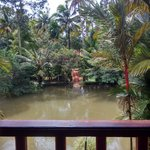 Backwater Retreat Theme House Foto