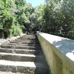 Stairs down to Arienzo/Positano
