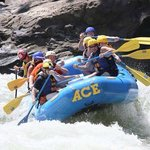 My group of 8 plus Stu on one of the New River rapids. Look at those smiles!