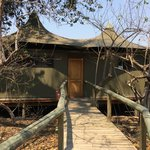 Bilde fra Wilderness Safaris Little Vumbura Camp