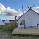 Foto de Yellowstone Under Canvas