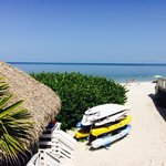 Foto de Naples Grande Beach Resort