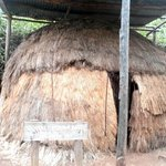one of the 'original' tribal huts