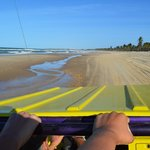 Buggy riding on the dunes and on the beach