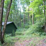 Allegany State Park Campgroundの写真