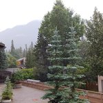 Foto de Banff Park Lodge Resort and Conference Centre