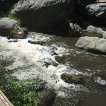 Oak Creek is rushing after recent storms.
