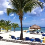 Photo de Allegro Cozumel