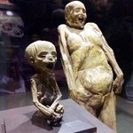 Photo de Mummy Museum (Museo de los Momias)