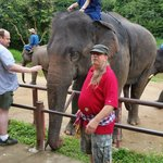 Thai Elephant Conservation Center Foto