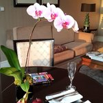 Orchid in the room