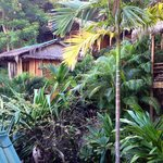 Bild från The Cove Beach Bungalows