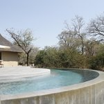 Thornybush Game Lodge Foto