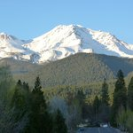 View of Shasta from the street the inn is on