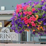 Foto The Springs Resort & Spa