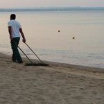 Cleaning the beach at 6.30am