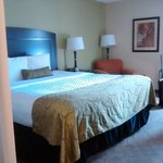 Foto de Best Western Plus Addison Galleria Hotel
