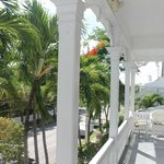 Bilde fra The Palms Hotel- Key West