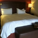 Φωτογραφία: Hampton Inn & Suites St. Louis/South I-55