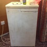 the fridge with the only electricity socket!