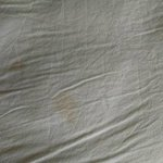 "bloodstains on the sheet in ""clean"" room"