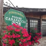 Podere Canapaccia의 사진