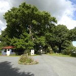 Te Aroha Holiday Park and Backpackersの写真
