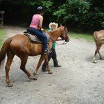 Smokemont Riding Stables