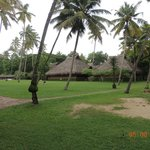 Photo de Marari Beach Resort