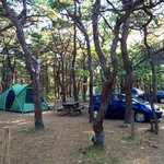 North Of Highland Camping Area resmi