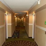 Photo de Holiday Inn Staunton Conference Center
