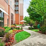 Staybridge Suites Chattanooga Downtownの写真