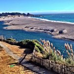 Seacliff on the Bluff Foto