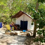 Dolphin Bay Divers Retreat Foto