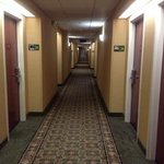 Φωτογραφία: Hampton Inn Dayton/Huber Heights