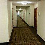 Drury Plaza Hotel St. Louis - Chesterfield照片