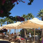 Almyrida Beach Hotel의 사진