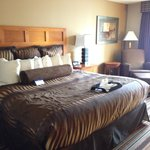 Foto BEST WESTERN PLUS Bloomington Hotel
