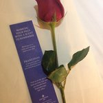And a stalk of rose!!!