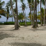 Foto de The Palms at Pelican Cove