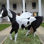Horse in front of Days Inn Wilbur