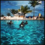 Photo de Viva Wyndham Fortuna Beach
